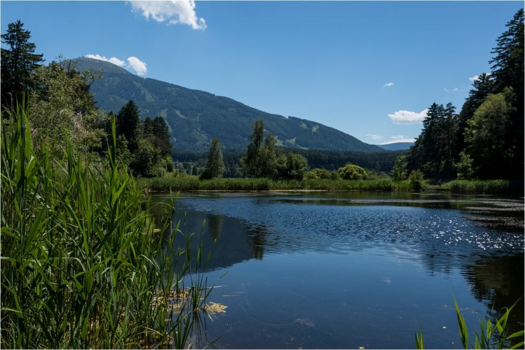 Seerosenweiher in Lans Tirol by Wild Connections Photography